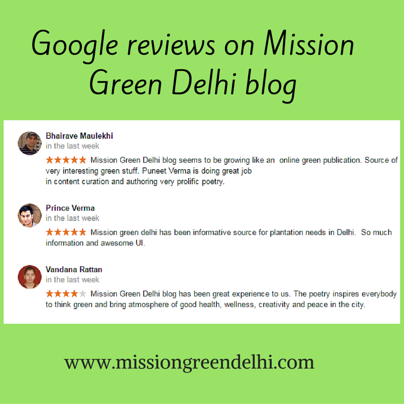 Google reviews on mission green delhi