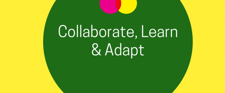 Collaboration, Learning and Adapting for Better Decisions & Impact