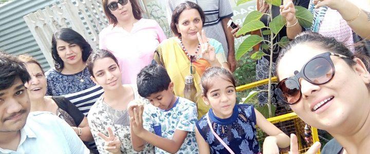 Saplings Plantation Drive By Mukamz Events