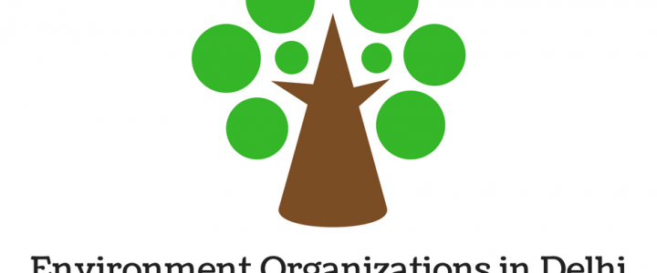 Environmental Organizations in Delhi