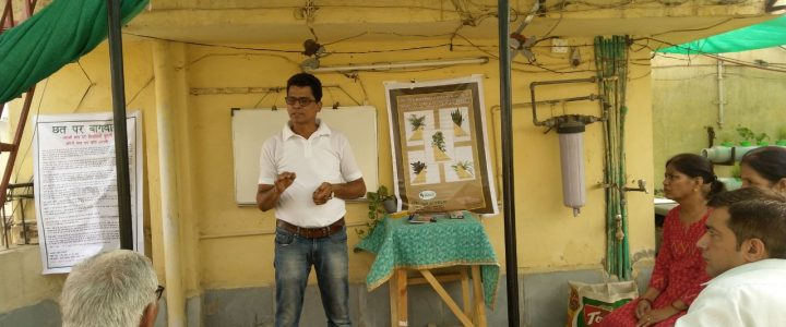 Soil Less Terrace Farming Training Sessions by Environmentalist Pravin Mishra