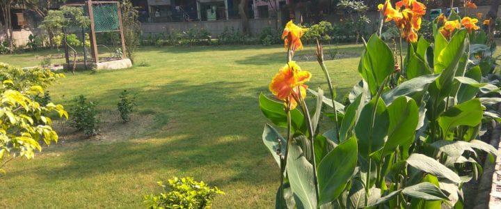 Transformation of Trilokpuri Park