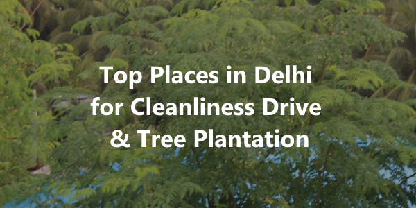 Top Places in Delhi for Cleanliness Drive & Tree Plantation