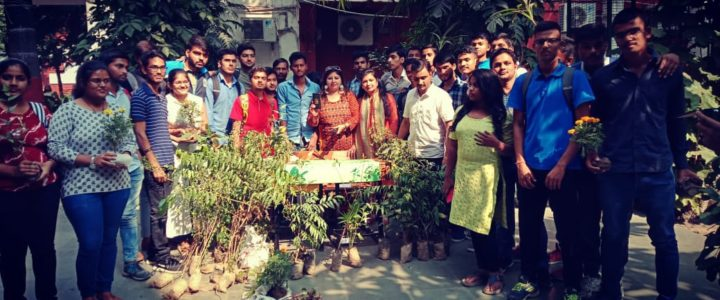 Plantation Drive at Rajdhani College, Delhi University