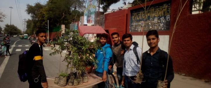 Youth Working for Environment at Rajdhani College, University of Delhi