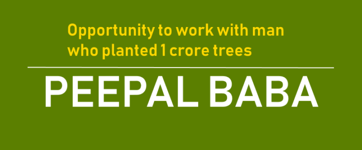 Opportunity to Work with Peepal Baba