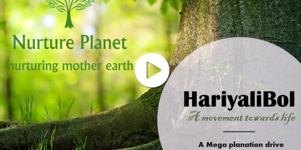 HariyaliBol, A Megaplantation Initiative by NuturePlanet