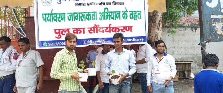 Plantation Program on Budh Vihar – Krishna Vihar Bridge by BVVS