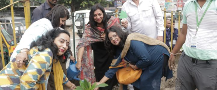 Plantation Drive by Anandram Jaipuria School in association with NurturePlanet