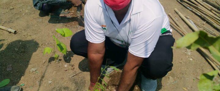 Plantation drive at Ghazipur Landfill
