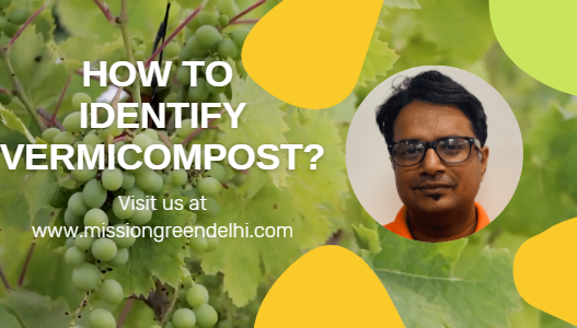 Before You Buy Vermicompost
